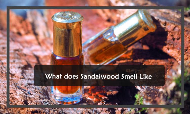 Sandalwood Smell Like